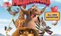 Щурият Мадагаскар
