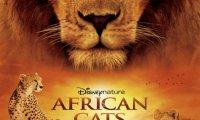 Африкански котки