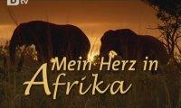 Сърцето ми е в Африка