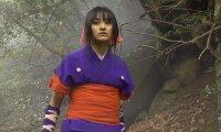 Гейша срещу нинджа