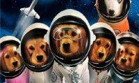Космически приятели