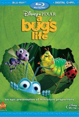 Животът на буболечките