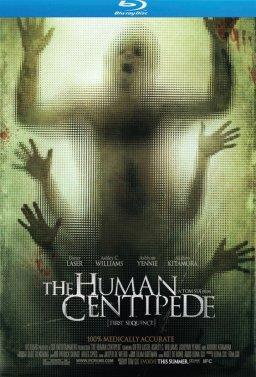 Човешка стоножка