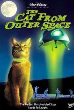 Котка от друга планета